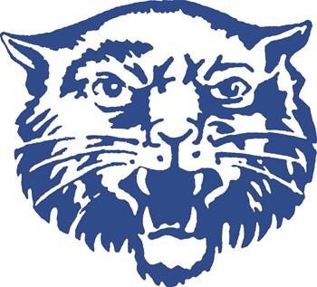Hancock Wildcat Logo