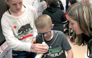 Students using microscope